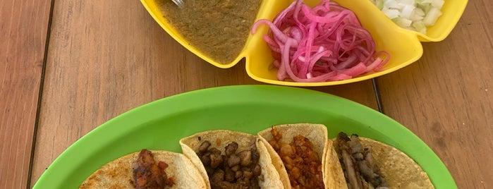 """Vegan Tacos """"El Bajón"""" is one of Tulum."""
