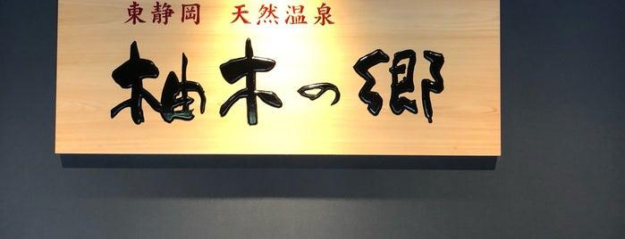 柚木の郷 東静岡天然温泉 is one of Locais curtidos por Masahiro.