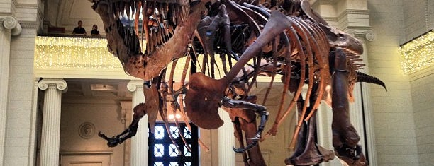 The Field Museum is one of Chicago.