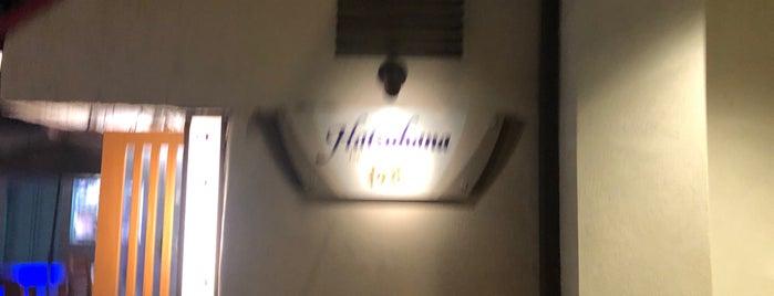 Hatsuhana Japanese Restaurant is one of Locais curtidos por Anna.