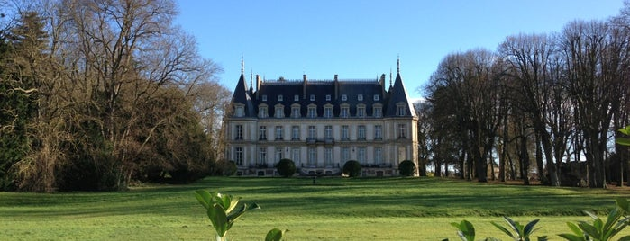 Château de Santeny is one of Locais curtidos por stephane.