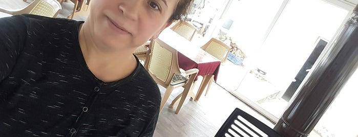 Şirin Cafe Kaynaklar is one of Kaynaklar.