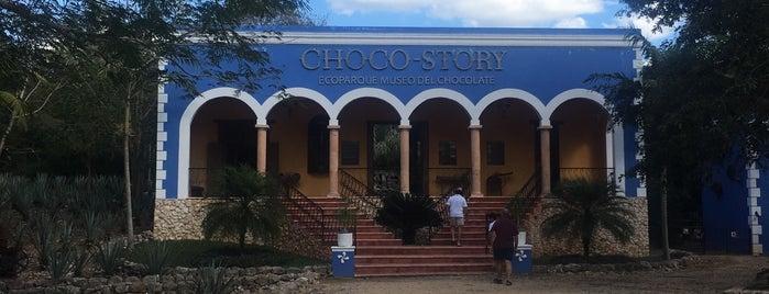 Museo del Chocolate is one of Posti che sono piaciuti a Isabel.