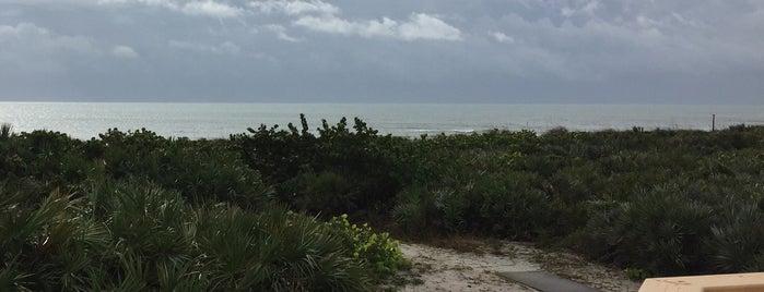 NASA Beach House is one of David : понравившиеся места.