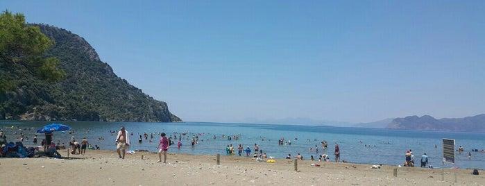 Muğla Ortaca İztuzu Plajı is one of Plaj ve Koylar.