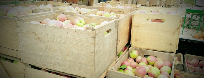 Boyer's Apple Orchard is one of #BudSpots.