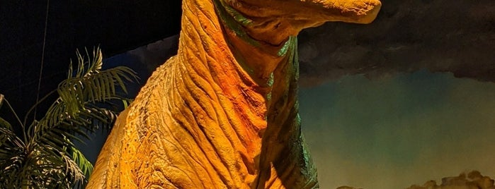 Dinosaur Exhibit is one of สถานที่ที่ Larissa ถูกใจ.