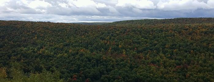 Ontario County Park is one of Posti salvati di Stephanie.