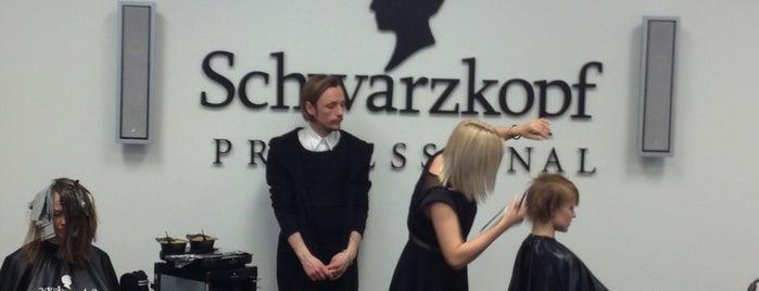 Академия ASK Schwarzkopf Professional is one of Andrey: сохраненные места.