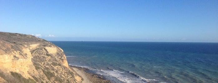 Ocean Trail is one of สถานที่ที่ Amaya ถูกใจ.