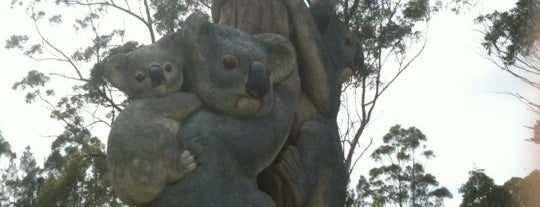 Billabong Koala Park is one of Lieux sauvegardés par Chaimongkol.