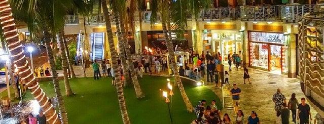The Best of Waikiki