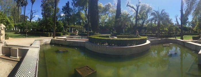 Jardín De Los Leones is one of สถานที่ที่ Angie ถูกใจ.