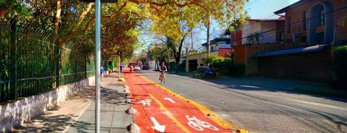 Parque Severo Gomes is one of Posti che sono piaciuti a Joseph.