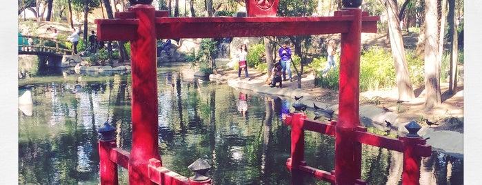 Parque Masayoshi Ohira is one of Lugares favoritos de Fanny.