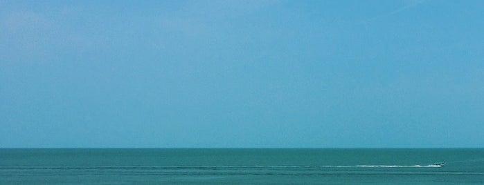 Playa de Celestún is one of Lugares favoritos de Fanny.