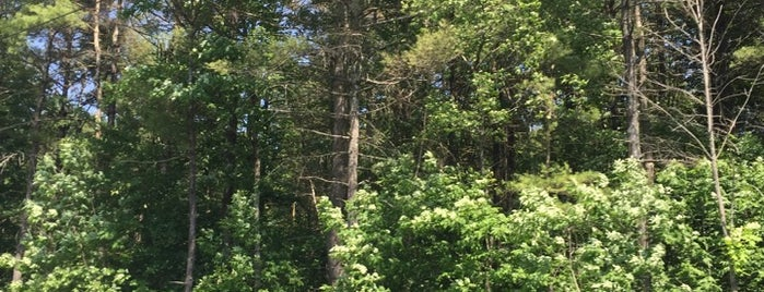 Adirondack Park is one of Posti che sono piaciuti a Nicholas.