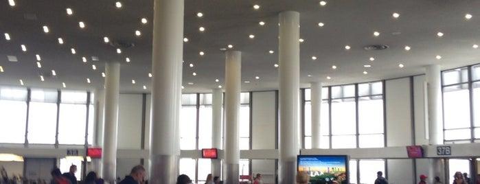 Flughafen Los Angeles International (LAX) is one of สนามบินนานาชาติ (1).