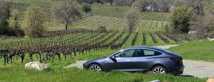 Iron Hub Winery is one of Locais salvos de Paresh.