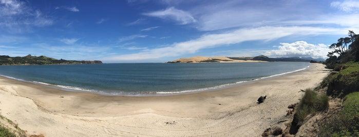 Omapere Beach is one of Nuova Zelanda.