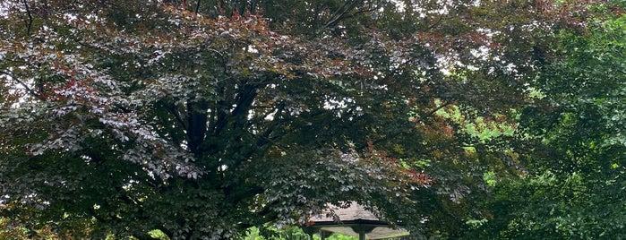 Page Park is one of Locais curtidos por Evrim.