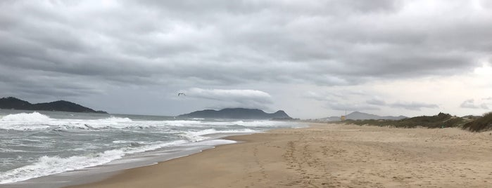 Praia do Novo Campeche is one of Floripa.