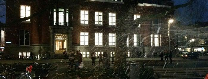 Erasmus University College is one of Erasmus van Rotterdam 🇳🇬.