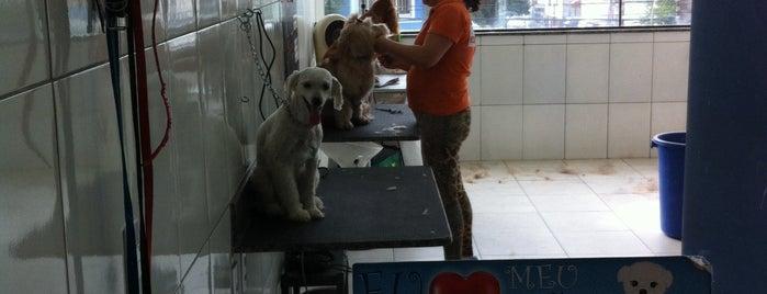 Clean Pet is one of Talita'nın Kaydettiği Mekanlar.