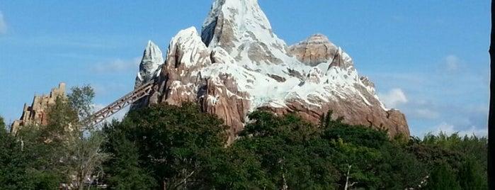 Asia is one of Walt Disney World.