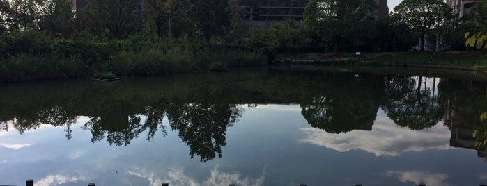 樋之池 is one of Lugares favoritos de Nak.