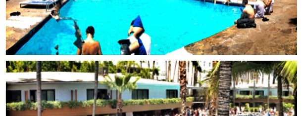 Roosevelt Hotel Pool is one of rooftop/outdoor drinking..