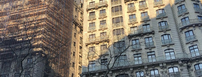 The Ansonia is one of De magie van New York.