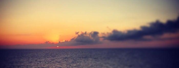 Grand Cayman is one of Lieux qui ont plu à Dominic.