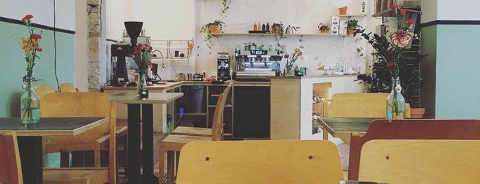 Populus Coffee is one of must-visit cafés in berlin.