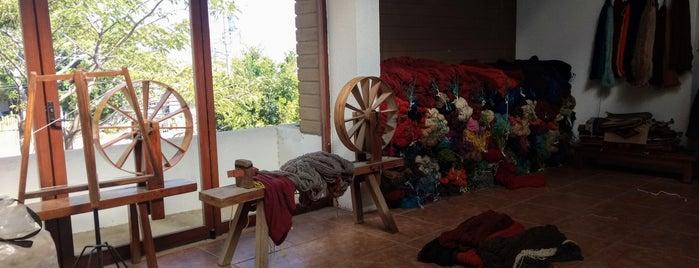 Tierra Antigua is one of Oaxaca.