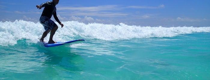 360 Surf School Cancun is one of Канкун что посмотреть?.
