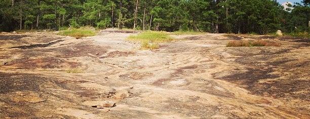 Davidson-Arabia Mountain Nature Preserve is one of Julie : понравившиеся места.