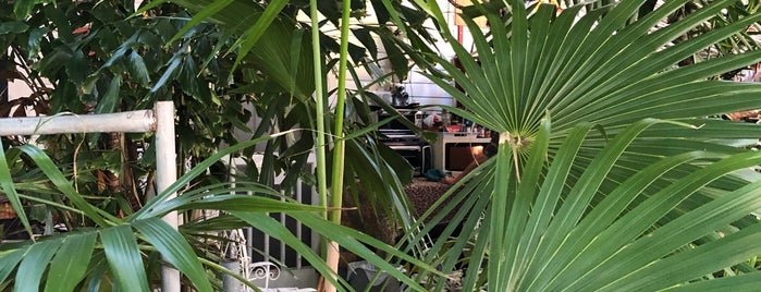 Nancy Foresters Secret Garden is one of Must-Try South Florida.