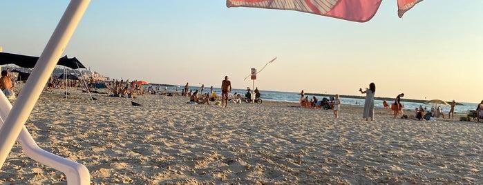 Gazos Beach is one of Tel Aviv Places.