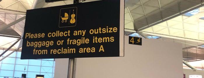 International Baggage Reclaim is one of สถานที่ที่ Mike ถูกใจ.