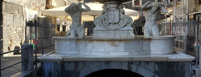 Fontana dell'Amenano is one of Sicily.