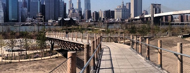Squibb Park Bridge is one of NYC.