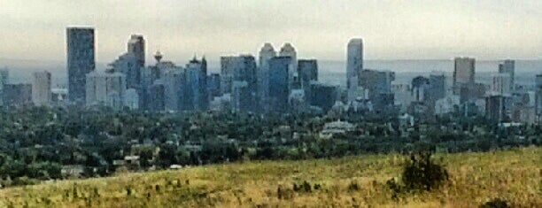 Nose Hill Park is one of Alberta - Wild Rose Country.