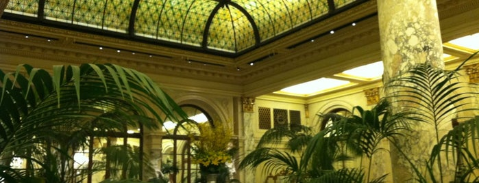 The Palm Court at The Plaza is one of foodie in the city (nyc).