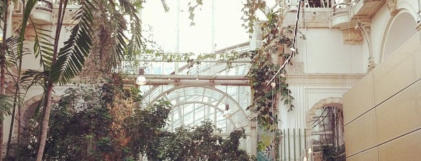 Palmenhaus is one of T+L's Definitive Guide to Vienna.