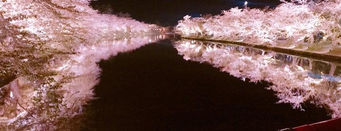 春陽橋 is one of Orte, die 西院 gefallen.