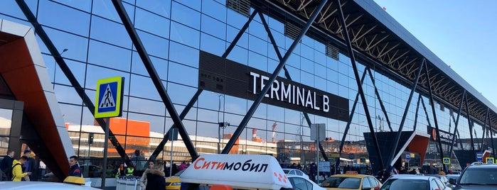 Terminal B is one of Lugares favoritos de Olga.