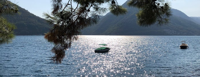 Marina Perast is one of +381642216944#.