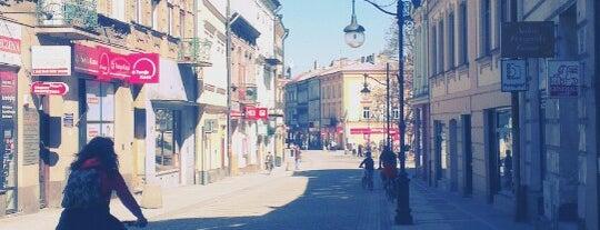 Stary Rynek is one of Luiza 님이 좋아한 장소.