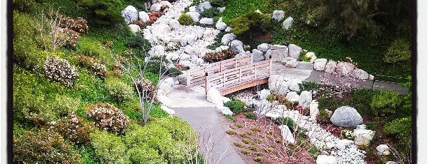 Japanese Friendship Garden is one of SD.